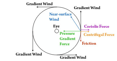Primary circulation of a hurricane with the force balance